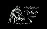 JS Casia logo